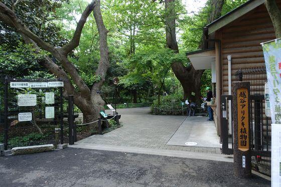 越谷アリタキ植物園