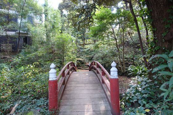 赤坂氷川神社 太鼓橋