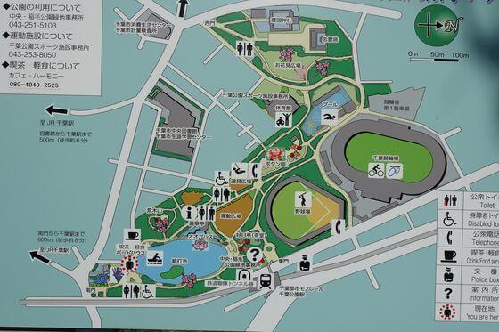 千葉公園 ハス 場所