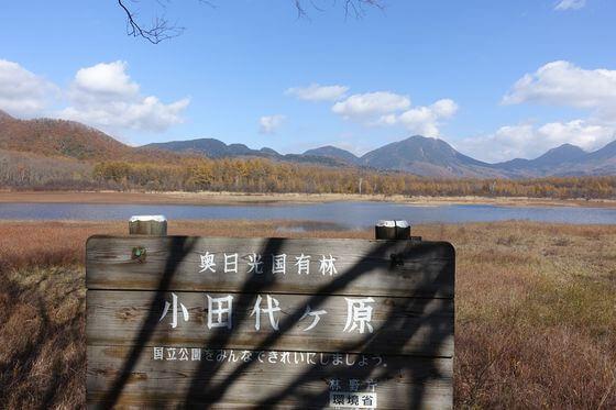 小田代原展望台