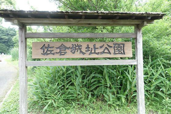 佐倉城下町 菖蒲まつり