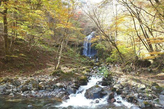 紅葉 マックラ滝