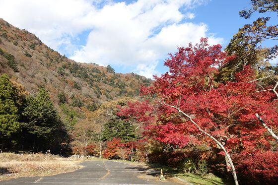 七ツ岩吊橋 紅葉 現在