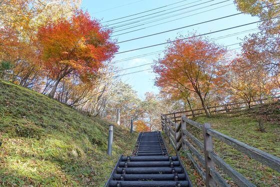 塩原 七ツ岩吊り橋 紅葉