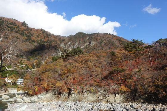 七ツ岩吊り橋 紅葉