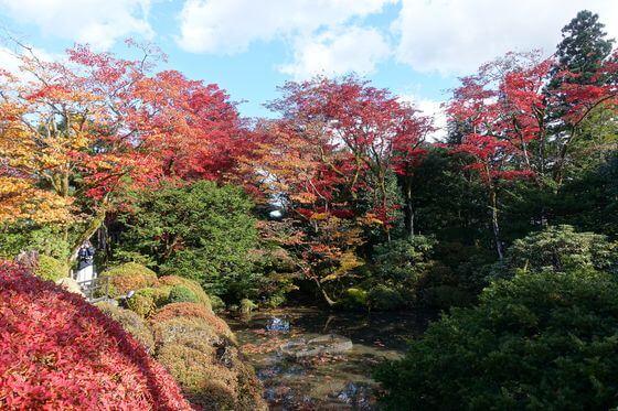 逍遥園 日光 紅葉