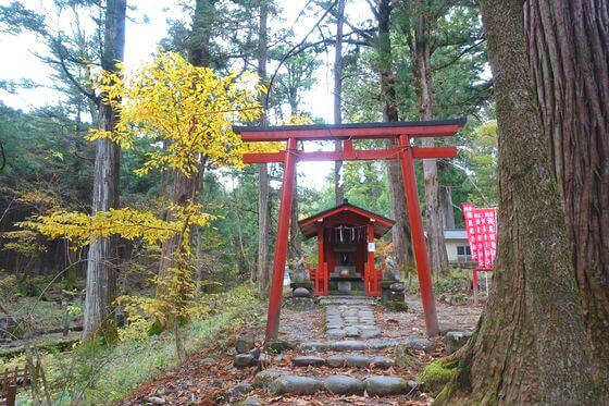 滝尾稲荷神社 紅葉