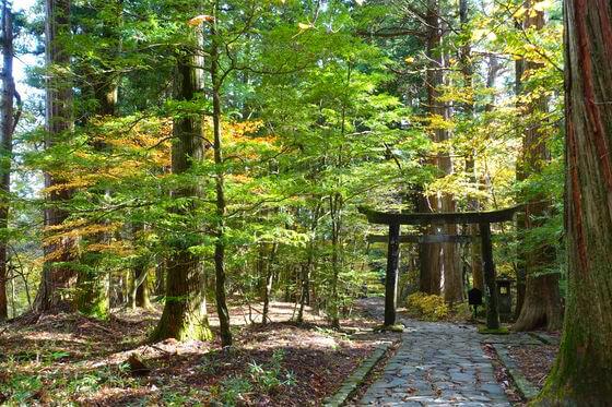滝尾神社 日光 紅葉