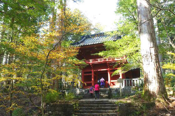 滝尾神社 紅葉