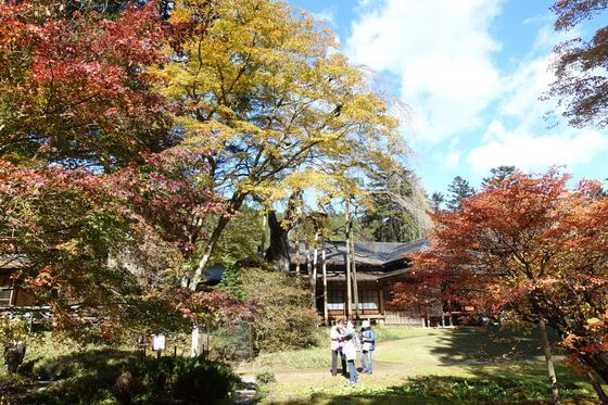 日光田母沢御用邸記念公園 紅葉