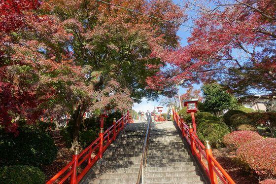 織姫神社 秋