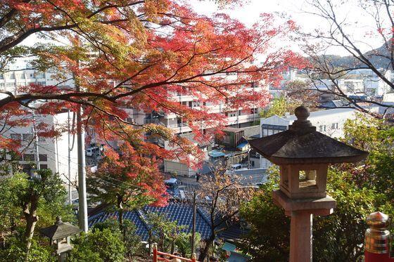 足利織姫神社 紅葉