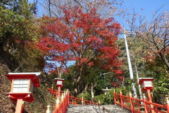 織姫神社 男坂