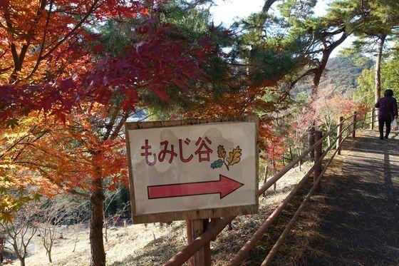 織姫公園もみじ谷 料金