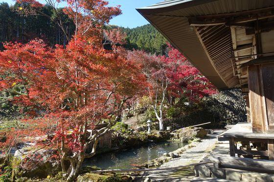 秋川渓谷 龍珠院 紅葉