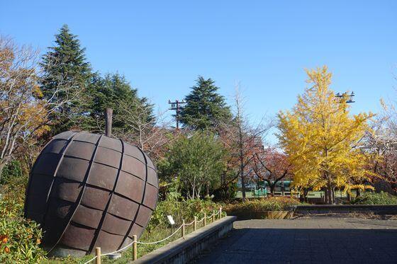 猿江恩賜公園 りんご