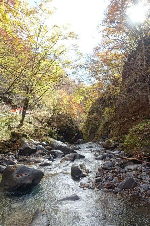 裏見ノ滝 栃木 紅葉