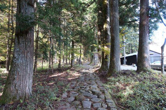 滝尾神社 参道