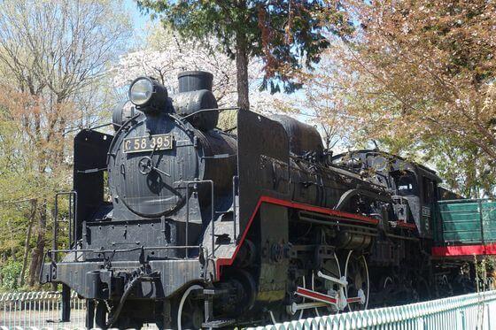 羽村市動物公園 蒸気機関車