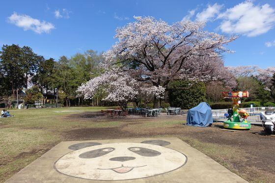 羽村市動物公園 芝生広場