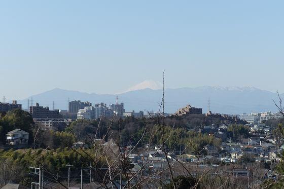 早渕公園 富士山