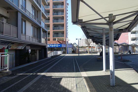 早稲田アカデミー センター北校