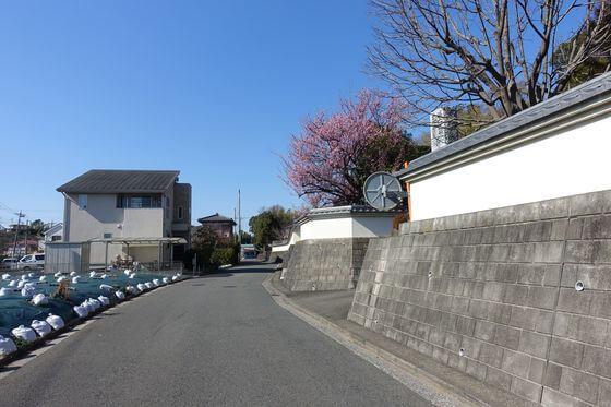 東善寺 横浜