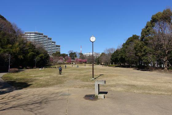 山田富士公園 アクセス