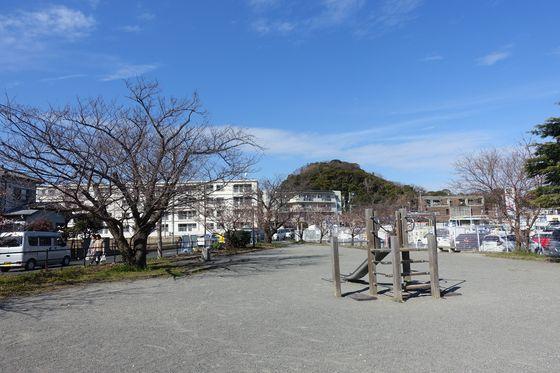 コーナン大船パーク1 玉縄桜