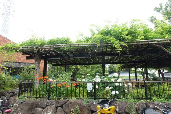 駒沢オリンピック公園 公園管理所口
