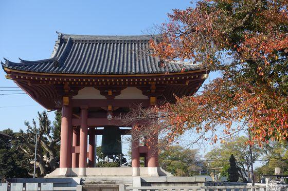 池上本門寺 鐘楼 紅葉