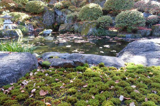 諏訪 温泉寺 庭園