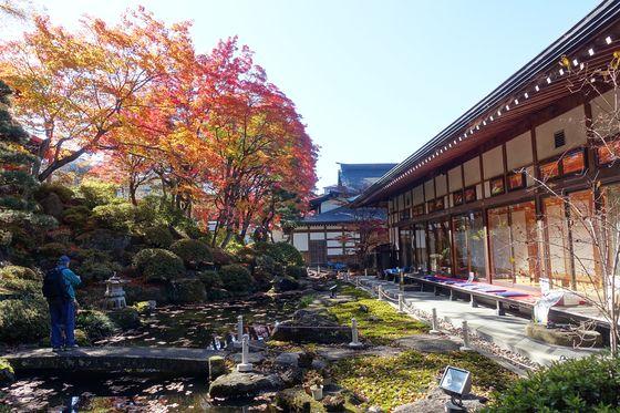 温泉寺 庭園 紅葉