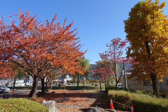 諏訪湖畔公園 紅葉 現在