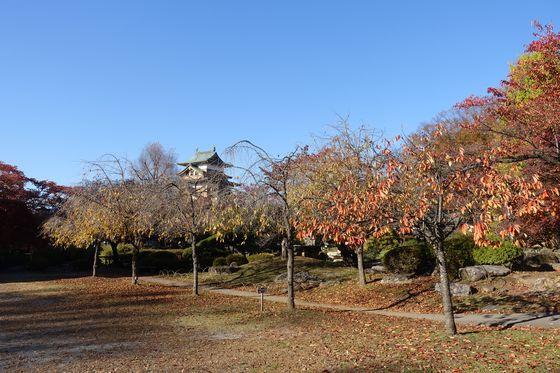 高島公園 秋
