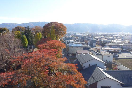 展望台 高島城 紅葉
