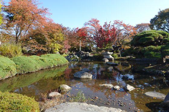高島公園 紅葉