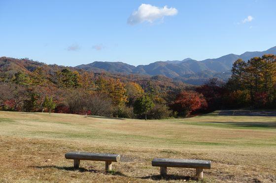 アルプス公園 松本 香りの森 紅葉
