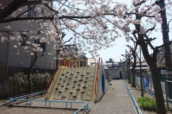 貴船堀公園 大田区 桜