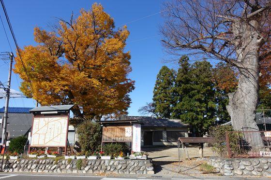 横田神社 松本市 紅葉