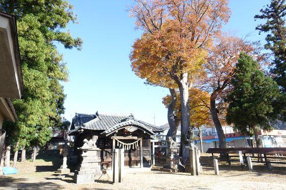 横田神社 松本 紅葉