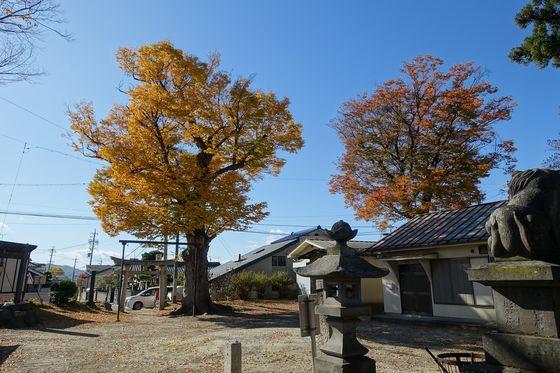 松本 横田神社 紅葉
