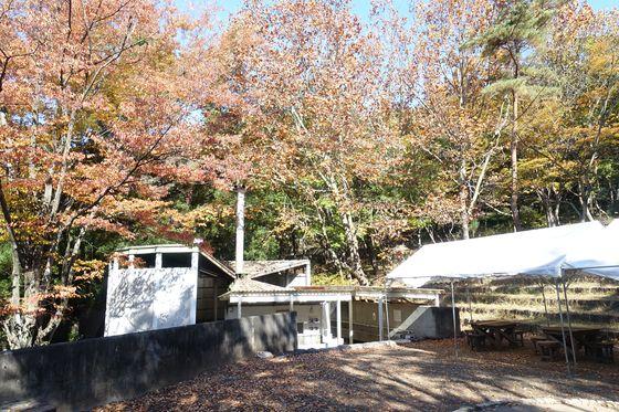 愛宕山こどもの国 キャンプ場 紅葉
