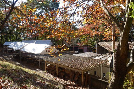 少年自然の家 キャンプ場 紅葉