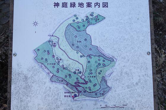神庭緑地 園内マップ