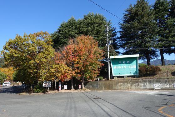 紅葉 緑が丘スポーツ公園