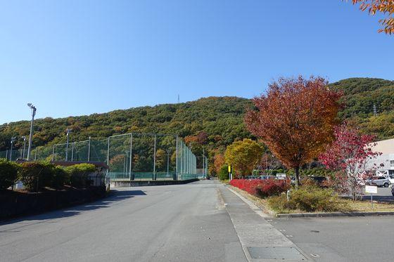 スポーツ公園 甲府 紅葉