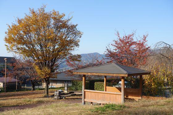 秋 塩山ふれあいの森総合公園