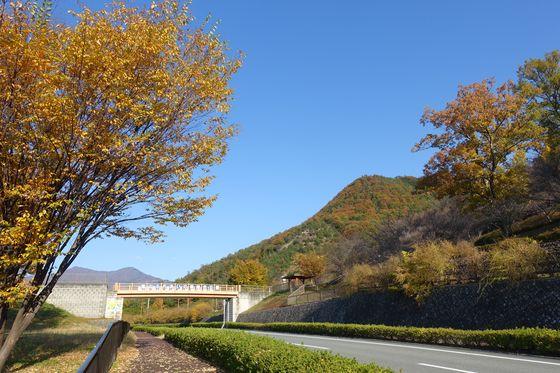 紅葉 塩山ふれあいの森総合公園