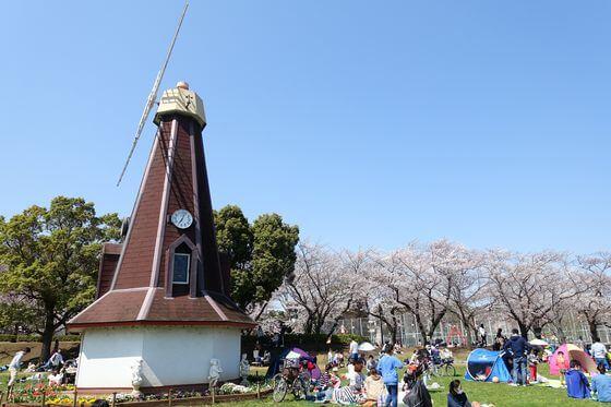 浮間公園 北区 桜